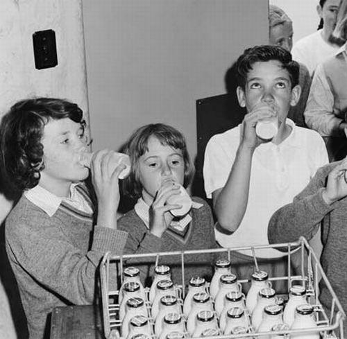 free-milk-school-2