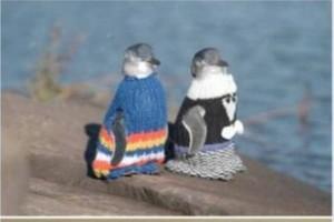 penguin-in-knit-2